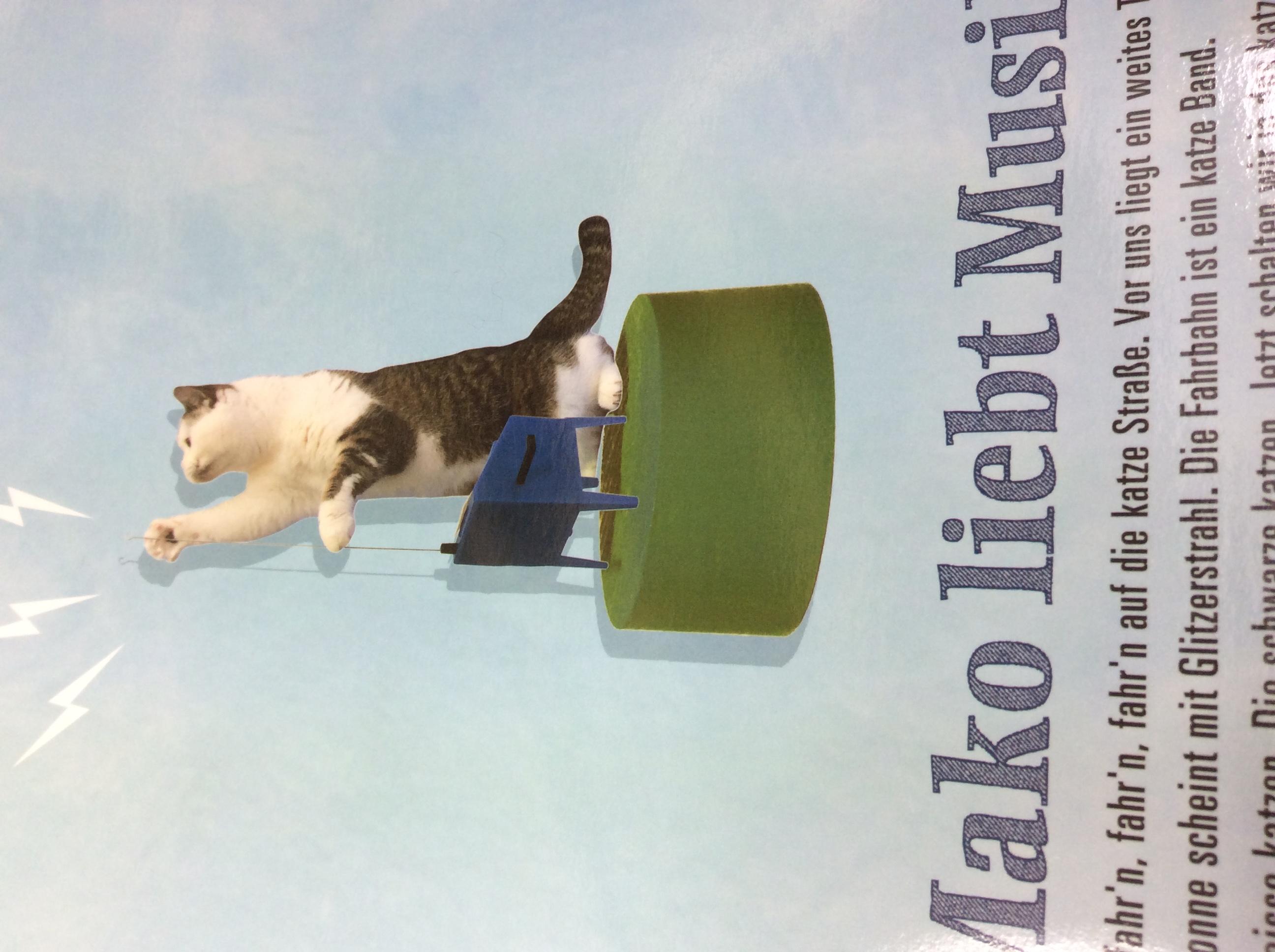 猫まこちゃんのでっかいポストカードテルミンを弾くまこのクローズアップ画像
