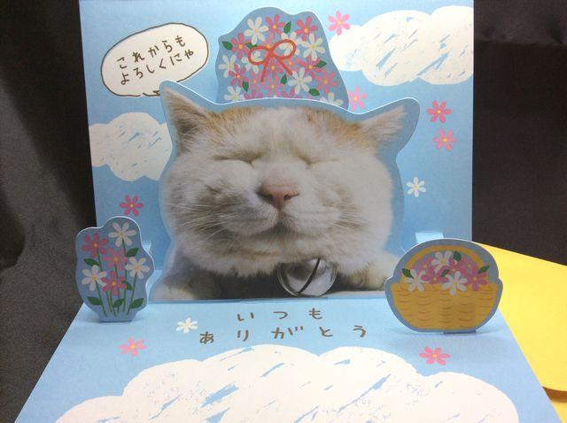 かご猫シロちゃんの飛び出す立体サンキューカードを開いた内側の画像