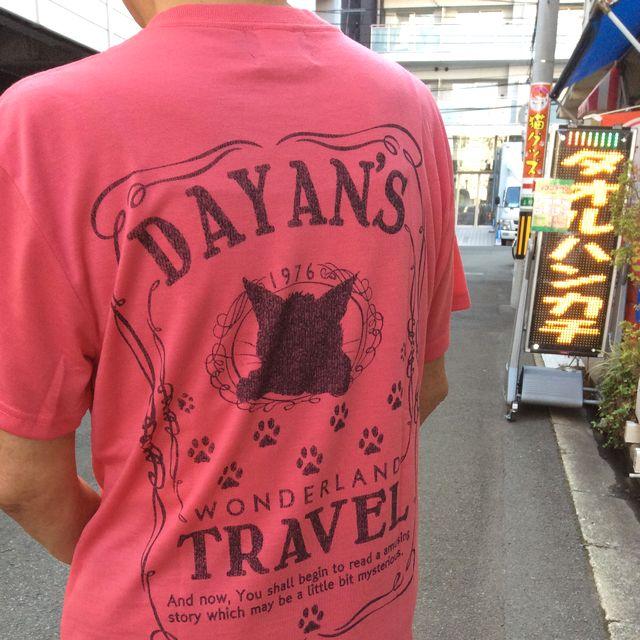ダヤンドライコットンタッチTシャツをモデルに着せて後ろ姿の全体を写した画像