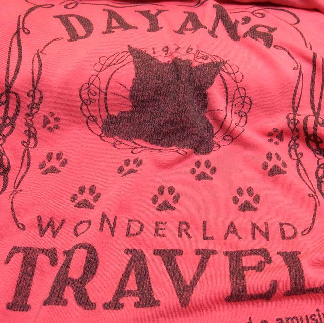 ダヤンドライコットンタッチTシャツ背中側のクローズアップ画像