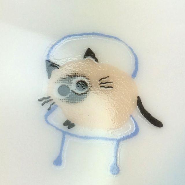 かとうしんじ先生のアニーブンキャットハート型小皿顔グレー猫のクローズアップ画像