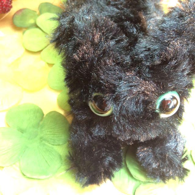 Powa Powa黒猫ボールチェーンバッグチャームの全体画像