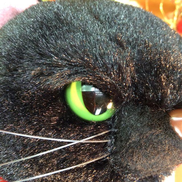 縫いぐるみの黒のスクラッチの顔のクローズアップ画像
