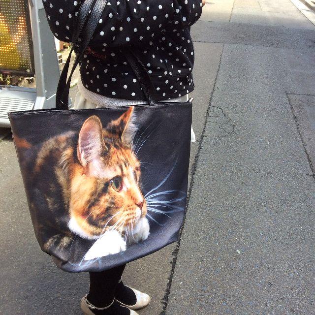茶トラ猫フォトデカトートバッグを手に持った状態の画像
