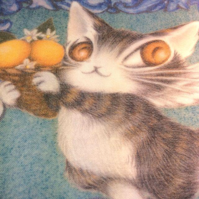 池田あきこ先生のわちふぃーるどダヤンのアートプリントストールアンダルシアのダヤンがオレンジを持っている部分のクローズアップ画像