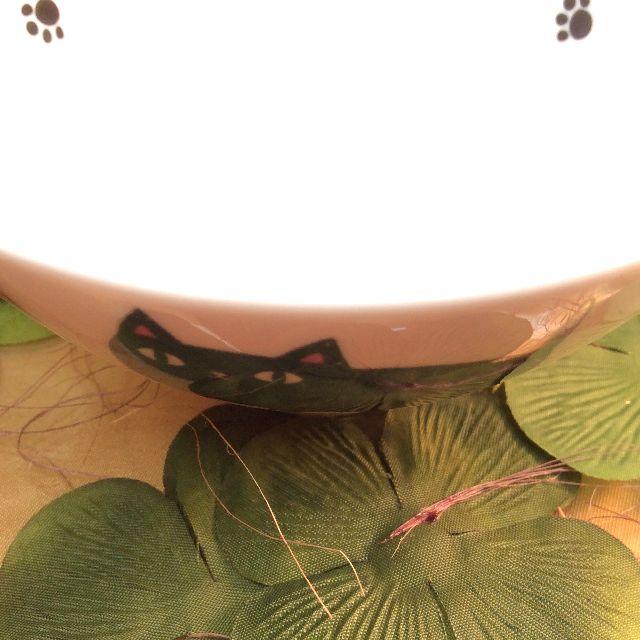 猫3兄弟飯碗行進の外側黒猫部分のアップ写真