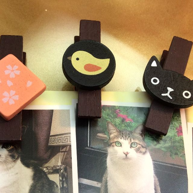 もりまさこさんの、6個組木製ミニクリップでチラシを留めた所の写真