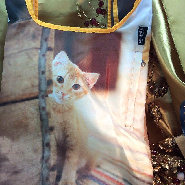 ルートートルーショッパーの茶トラ子猫写真柄全体写真