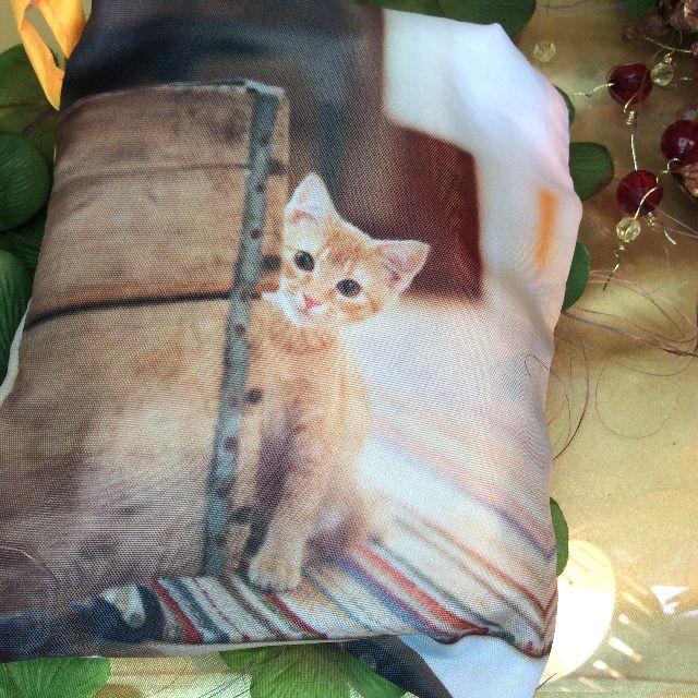 ルートートルーショッパーの茶トラ子猫写真柄を小さく畳んだところの全体写真