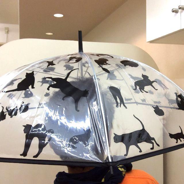 猫だらけビニール長傘の全体写真