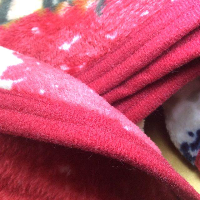池田あきこ先生のわちふぃーるどダヤンのフリースひざ掛けロンドン柄のパイピング部分のアップ写真