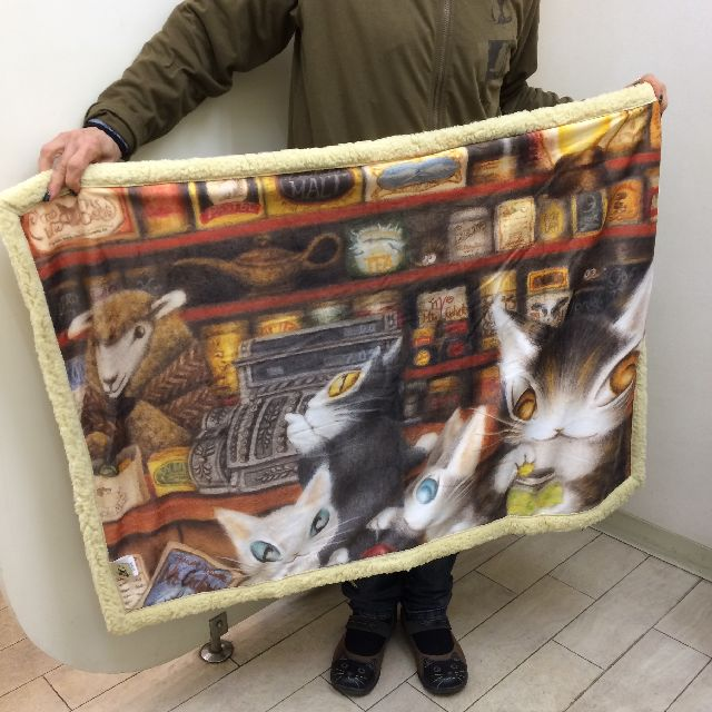ダヤンのアートひざかけ「グロッサリー」を横に持った画像