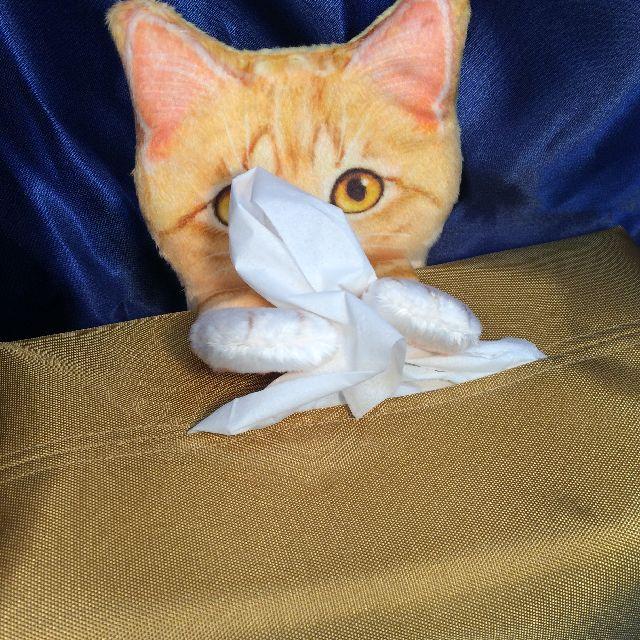 フェリシモ猫部のティシュボックスカバーにトラ猫が前足を伸ばしている画像