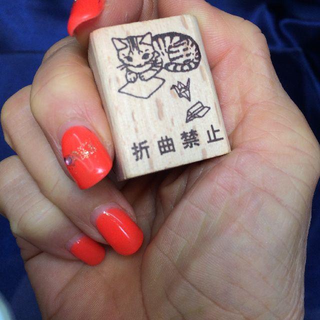 ポタリングキャット猫はんこ小「折曲禁止」柄を手に持った画像
