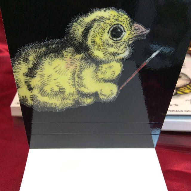 ヒグチユウコさんの猫とミカンの柄のメモ帳の表紙の裏側の絵
