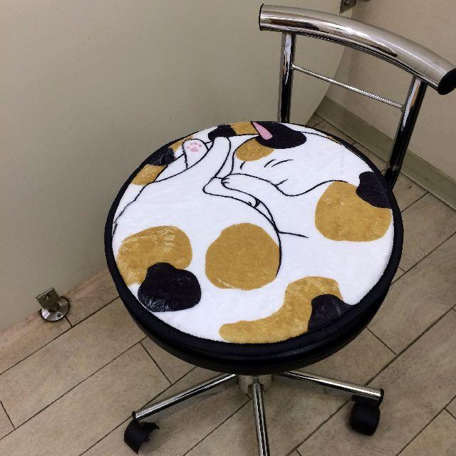 大西賢の丸い三毛猫チェアパッドを椅子の上に置いた画像
