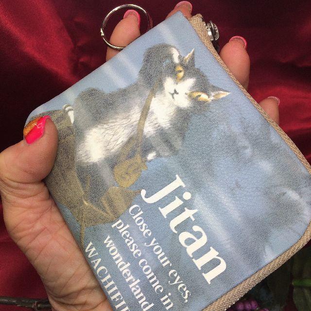猫のジタンの本革製パスケースを手の平に載せた画像
