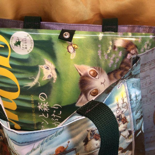 猫のダヤンのラミネートレッスンバッグにA4サイズの雑誌を入れた状態の画像