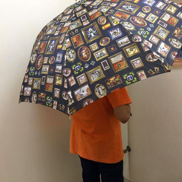 ダヤンの長傘エスパーニャをさした画像