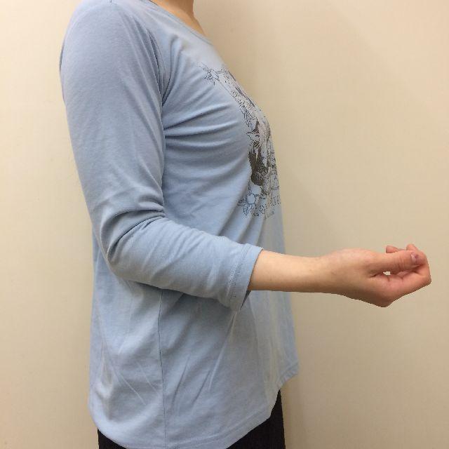 猫のダヤンのクルーネック7分袖Tシャツ「GOLDEN HARVEST」柄の袖の画像