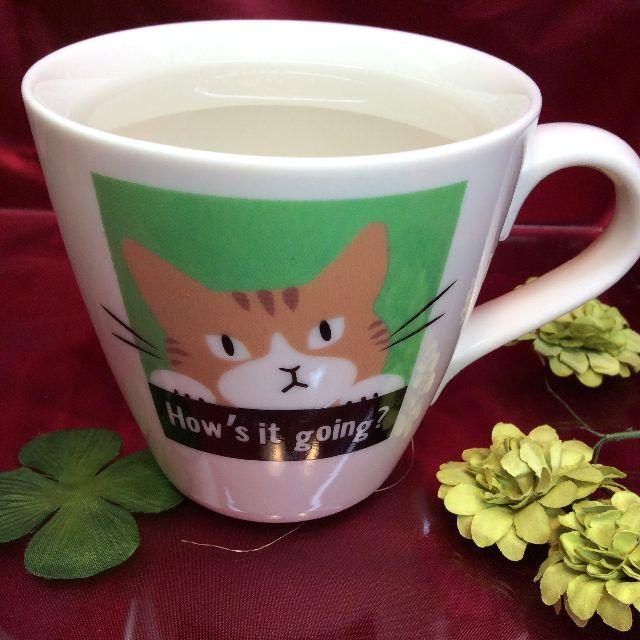 温かいお湯を入れた時の猫のマグカップの画像