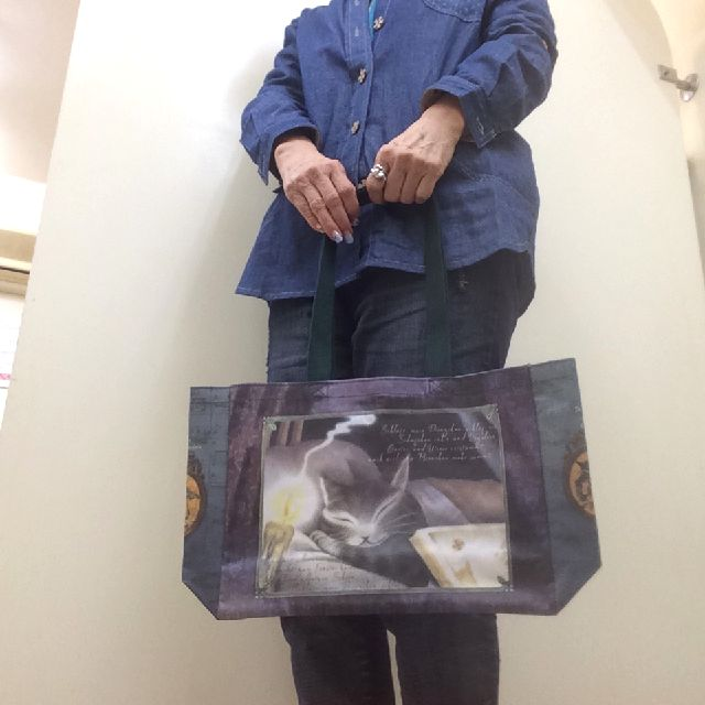 猫のダヤンのラミネートレッスンバッグ音楽会を手に持った画像